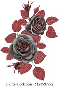 Gothic Bouquet  - Dark Roses Vector