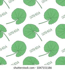 Gotu kola. Leaves, text. Background, wallpaper, seamless. Sketch. Color pattern.