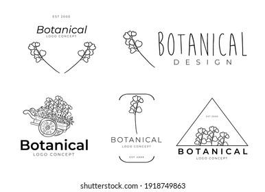 Graceful handmade botanical floral feminine minimal design