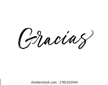 Gracias ink brush vector lettering. Thank you in Spanish. Modern phrase handwritten vector calligraphy. Black paint lettering isolated on white background. Postcard, greeting card, t shirt print.