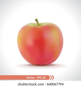 Gradient Mesh Vector Illustration of a Photo Realistic Red Apple