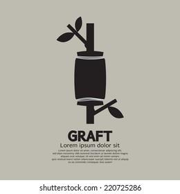 Graft A Tree Gardening Cultivate Method Vector Illustration
