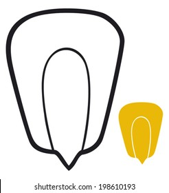 grain of corn (seed)