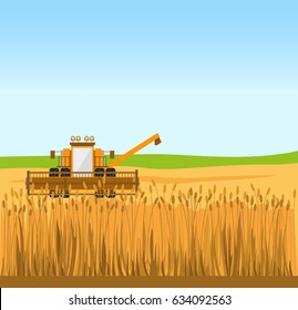 Grain harvester combine work in wheat field. Vector illustration