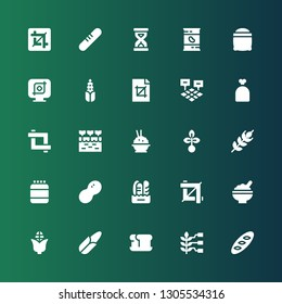 grain icon set. Collection of 25 filled grain icons included Bread, Wheat, Corn, Rice, Crop, Peanut, Protein, Seed, Farm, Sack, Field, Seeds, Beans, Sandclock