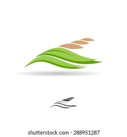 Grain logo. Wheat symbol. Vector illustration.