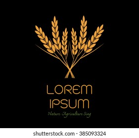 grain organic natural product with black background. concept vector illustration ,Rice gold logo vector design