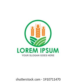 grain vector , agriculture logo vector