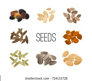 Grains and seeds isolated on white background. Sunflower and pumpkin, rice and corn, cereals