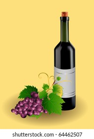 grape and bottle of wine, vector