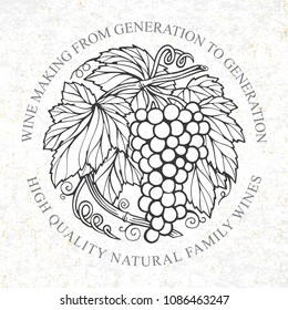 Grape bunch hand drawn sketch. Grape and vine vintage style vector illustration. Wine theme design template.