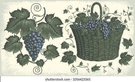 Grape cluster and a basket of grapes. Design set. Hand drawn engraving. Vector vintage illustration. 8 EPS