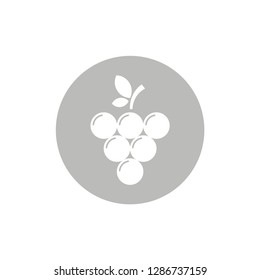 grape fresh fruits symbol icon vector food and drink design object