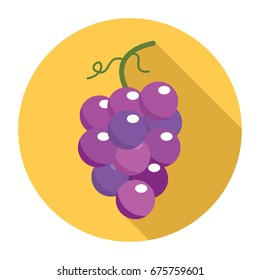 Grape icon. Flat grape icon. Grape vector.