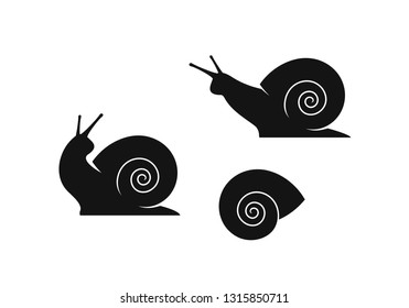 Grape snail. Isolated snails on white background