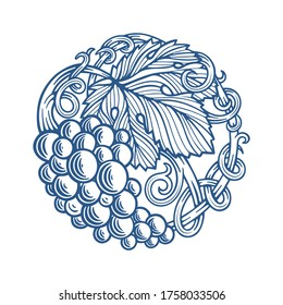 Grape and vine hand drawn vector illustration. Grapevine engraving style drawing. Part of set.