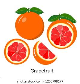 Grapefruit set on white background,vector illustration.
