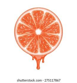 Grapefruit slice isolated on white. EPS10 vector