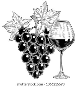 Grapes branch and glass with grap wine.