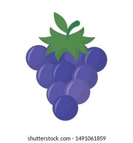 Grapes design, Fruit healthy organic food sweet and nature theme Vector illustration