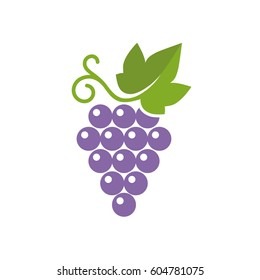 Grapes icon. Vector illustration of simple color grape with leaf, isolated on white.