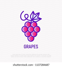 Grapes with leaf thin line icon. Modern vector illustration for wine logo.