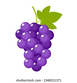 Grapes on a white background isolated. Vector illustration