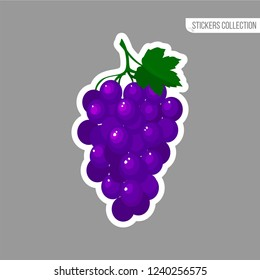 Grapes sticker isolated on white background. Bright vector illustration of colorful bunch of juicy grapes. Fresh cartoon