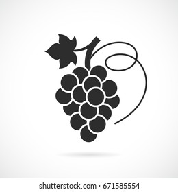 Grapes vector icon isolated on white background