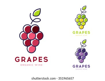 Grapes Vector Logo Icon isolated. Organic Wine branding template. Nature Grapes Line Logotype