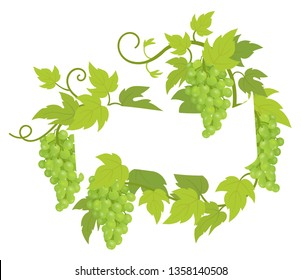 Grapevines plant frame label. Border grape bunches frame decor. Copy space for text name or logo. Grapes green leaves. Vector flat Illustration.
