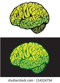 Graphic Brain