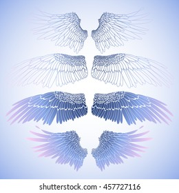 Graphic collection of wings. Vector art in blue. Coloring book page design for adults and kids