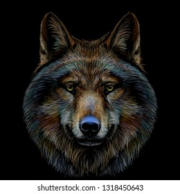 Graphic color portrait of a wolf's head on a black background.