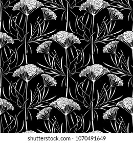 Graphic cumin seamless pattern. Vector natural spices. Coloring book page for adults and kids