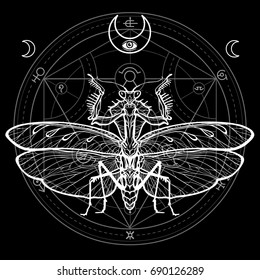 Graphic decorative image of the Mantis. Alchemical circle of transformations. Esoteric, Mysticism, Sorcery.  Vector illustration isolated on a black background.