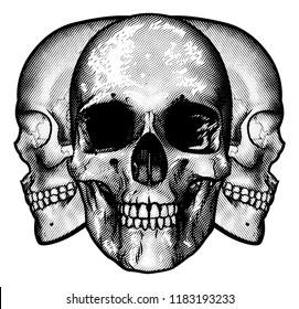 A graphic design featuring three human skulls