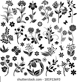 Graphic floral collection