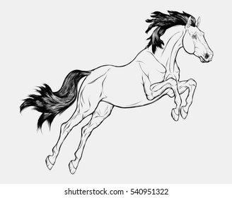 Graphic illustration of a jumping  Trakehner. Vector horse with black mane isolated on a light gray background. Tattoo or emblem for equestrian schools, shops.