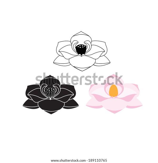 Graphic Lotus Magnolia Flower Symbols Stock Vector Royalty Free