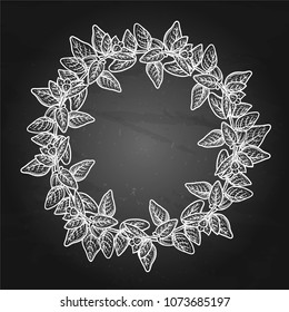 Graphic oregano wreath. Natural vector design isolated on the chalkboard