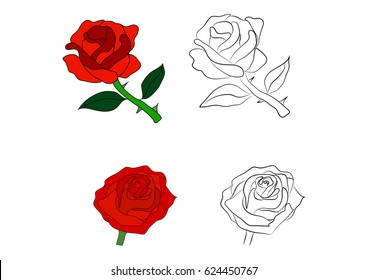 Graphic roses in color and the contour drawn by hand. Vector illustration