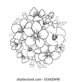 Cherry Blossom Coloring Pages Stock Illustrations Images