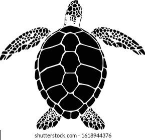 graphic sea turtle,vector illustration of sea turtle,vector of turtle design on a white background
