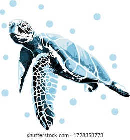 graphic sea turtle,vector of turtle design on a white background
