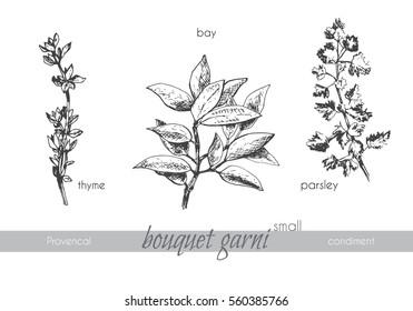 Graphic set of small bouquet garni