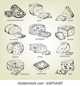 Graphic sketch of different cheeses icons. Vector set of realistic outline dairy products. Isolated curds collection used for logo design, recipe book, advertising cheese or restaurant menu.