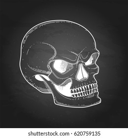 Graphic skull with fearful smile. Vector art isolated on the chalkboard