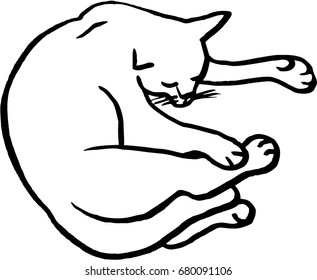 Graphic vector illustration sleeping cat