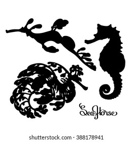 Graphic vector Seahorse silhouettes collection. Ocean creatures isolated on white background